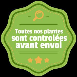 badge_envoi.png